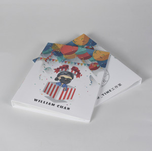 Custom Printed Cover Clear Inner Pockets Display Book