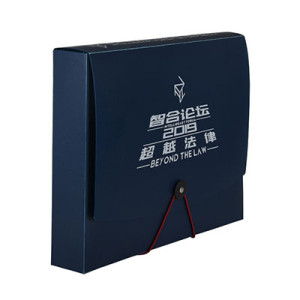 Custom Print Plastic Storage Archives Cases File Boxes with Lid