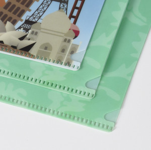 Customzied Print Double Layers L-shape File Folder