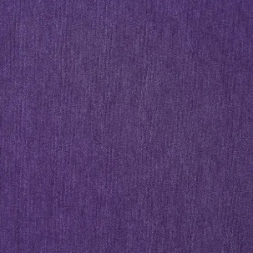 Comfortable Textile Bm/T Plain 70.6% Polyester 29.4% Bamboo 60X50 Knitted/Knitting Fabric for Shirt Garment