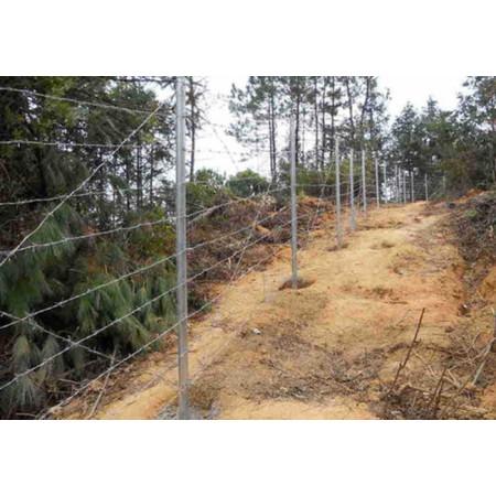 安全地域のためのJFN中国有刺鉄線フェンス