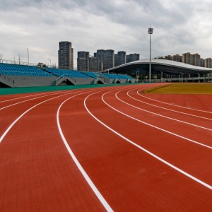 Prefabricated synthetic running track surface from Chinese Novotrack