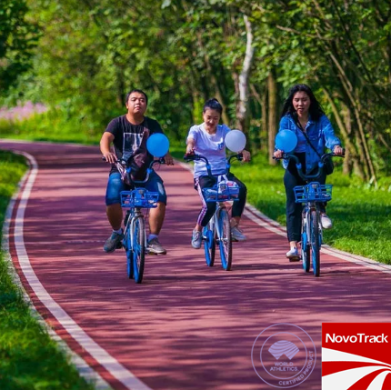 Chinese Park jogging track rubber flooring jogging track material
