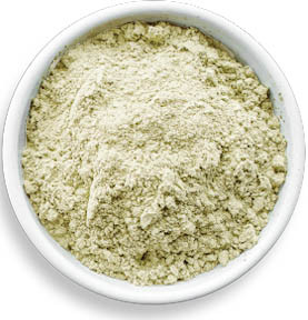 Hemp Seed Protein