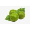 Natural Monk Fruit Extract Powder Zero-Calorie Sweetener For Sugar Substitude