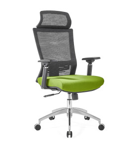 High Back office Mesh Executive Chair with Aluminum base,4D Armrest,height adjustable headrest(YF-GA12-Green)