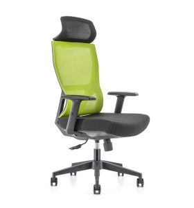 High Back office Mesh Executive Chair with Nylon base,PU Armrest,Height adjustable headrest(YF-GA15-Green)