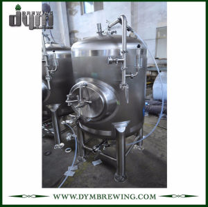 Tanque de almacenamiento de cerveza de acero inoxidable de grado alimenticio 10bbl (EV 10BBL) para almacenar la cerveza