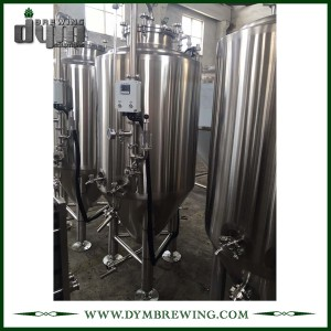 Advanced Production Technology 300L Kombucha fermenter (EV 300L, TV 390L) with Glycol Jacket for Hotel Bar