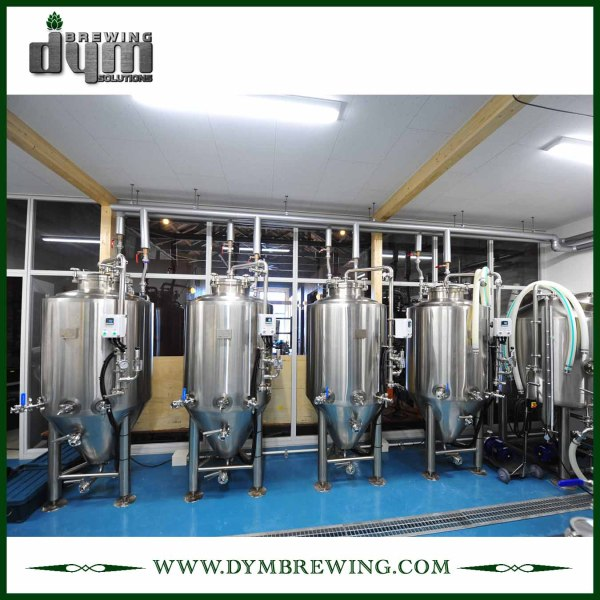 Professional Customized 600L Unitank Fermenter for Beer Brewery Fermentation with Glycol Jacket