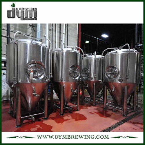 Fermentador Unitank 20bbl personalizado profesional para fermentación de cervecería con chaqueta de glicol