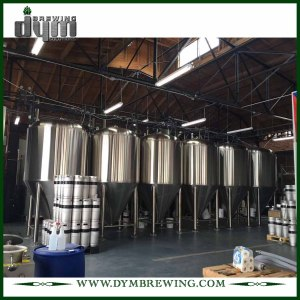 Advanced Production Technology 15bbl Kombucha Fermenter (EV 15BBL, TV 19.5BBL) with Glycol Jacket for Hotel Bar