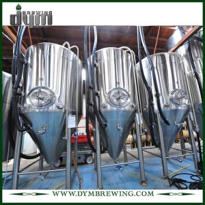 Advanced Production Technology 50bbl Kombucha Fermenter (EV 50BBL, TV 65BBL) with Glycol Jacket for Hotel Bar