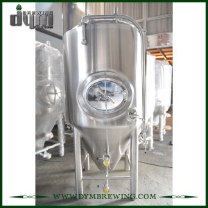 High Efficiency Stainless Steel 10bbl Wine Fermenting Tanks (EV 10BBL, TV 13BBL) for Sale