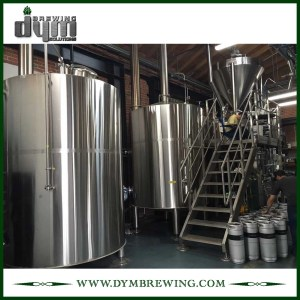 High Quality Stainless Steel 20BBL Kombucha Brewing Equipment for Sale