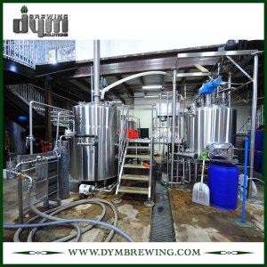 Customized 20HL Brewing Equipment for Restaurant Beer Brewing