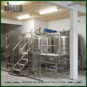 Designed High Quality 5BBL Micro Brewing Equipment for Pub