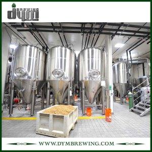 Профессиональный индивидуальный ферментер Unitank 30HL для ферментации пивоварен с гликолевой рубашкой