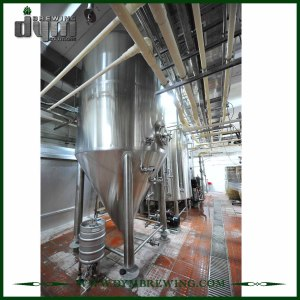 Fermenteur adapté aux besoins du client par professionnel 80HL Unitank pour la fermentation de brasserie de bière avec la veste de glycol
