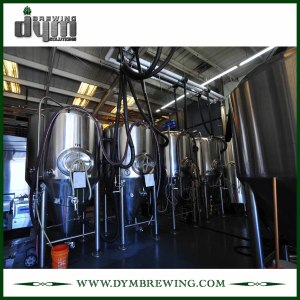 High Efficiency Stainless Steel 15bbl Wine Fermenting Tanks (EV 20BBL, TV 26BBL) for Sale