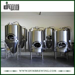 Réservoir de bière lumineux personnalisé 5bbl (EV 5BBL, TV 6BBL) pour brassage de pub