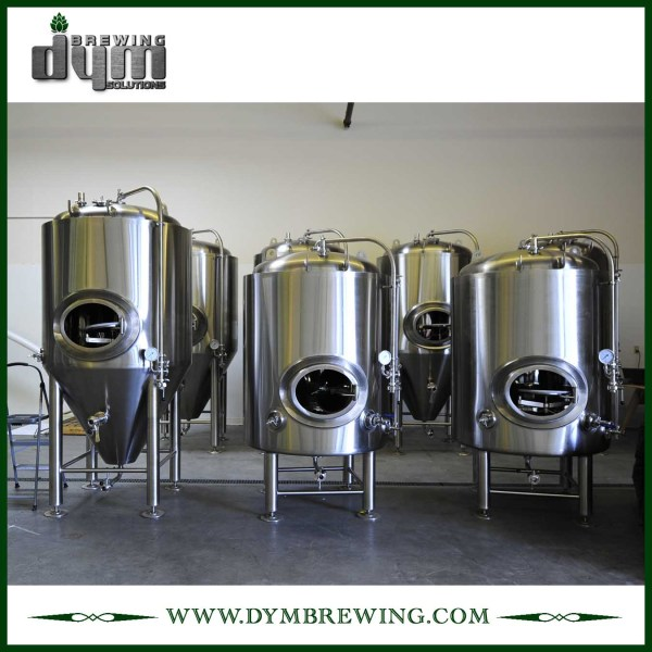 Customized 5bbl Bright Beer Tank (EV 5BBL, TV 6BBL) for Pub Brewing