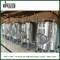 Réservoir de bière lumineux 20bbl personnalisé (EV 20BBL, TV 24BBL) pour brassage de pub