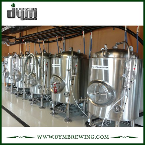 Tanque de cerveza brillante personalizado de 10bbl (EV 10BBL, TV 12BBL) para pub Brewing