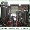 Customized 40bbl Bright Beer Tank (EV 40BBL, TV 48BBL) for Pub Brewing