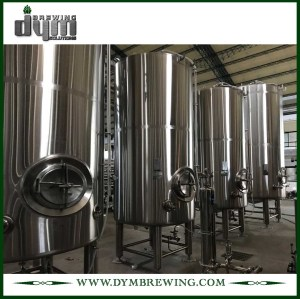 Tanque de cerveza brillante personalizado de 5bbl (EV 5BBL, TV 6BBL) para pub Brewing