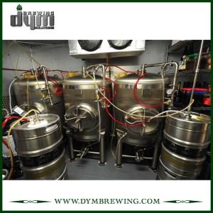 Fermenteur à paroi simple 5bbl personnalisé bon marché (EV: 5BBL)