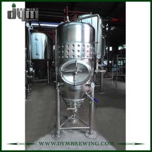 Cheap Customized 5HL Single Wall Fermenter