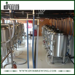 High Quality Stainless Steel 5BBL Beer Storage Tank for Storage Beer