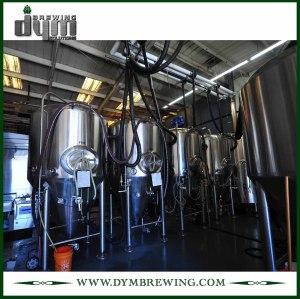 Tanque de almacenamiento de cerveza de acero inoxidable de grado alimenticio 20bbl (EV 20BBL) para almacenar la cerveza