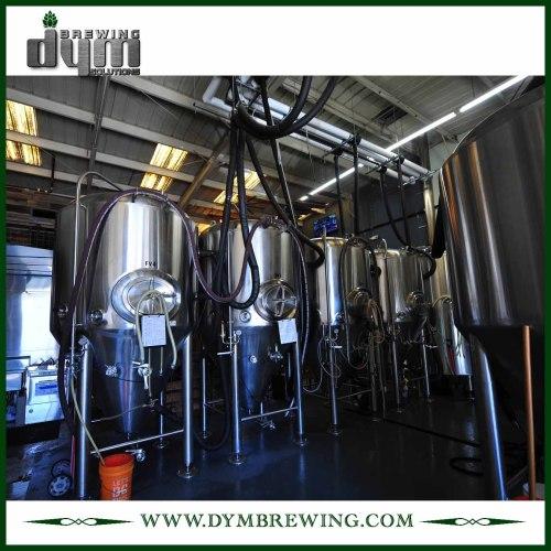 Tanque de almacenamiento de cerveza de acero inoxidable de grado alimenticio 5bbl (EV 5BBL) para almacenar la cerveza