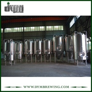 Professional Customized 10bbl&20bbl Unitank Fermenter for Beer Brewery Fermentation with Glycol Jacket