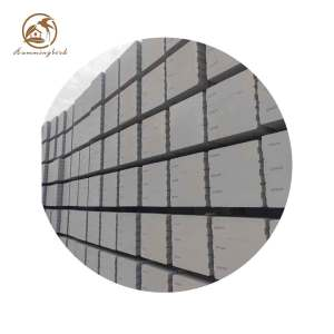 Exterior or Interior Wall/Alc Panel/AAC Brickl for Australian Standard