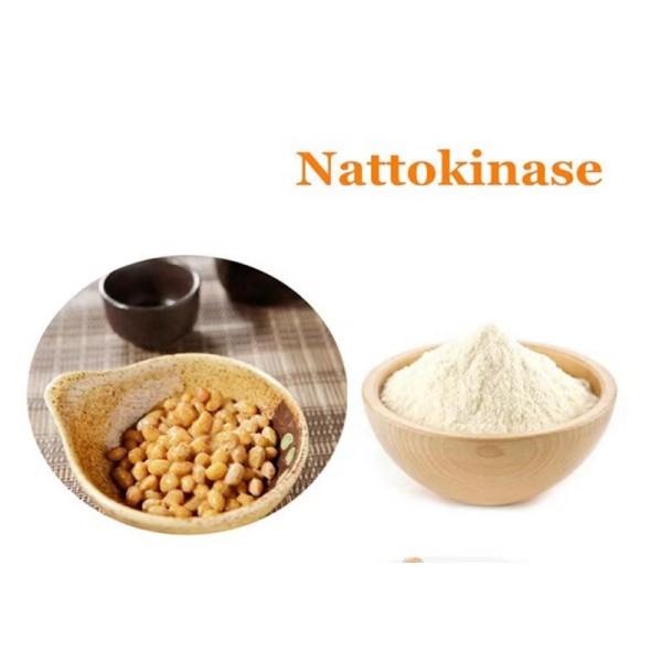 Fermented soybean natto extract Bacillus subtilis natto is rich in NK(nattokinase)