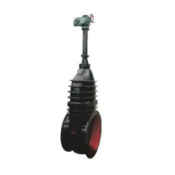 electric rising stem wedge gate valve