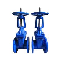Rising stem rubber gate valve
