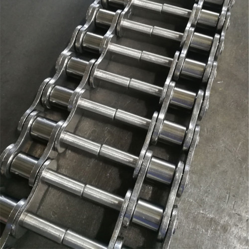 Double pitch roller chain with extended pins