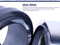 Selection principle of mechanical seals