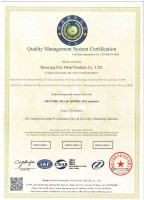 Quality Management System Certification, English