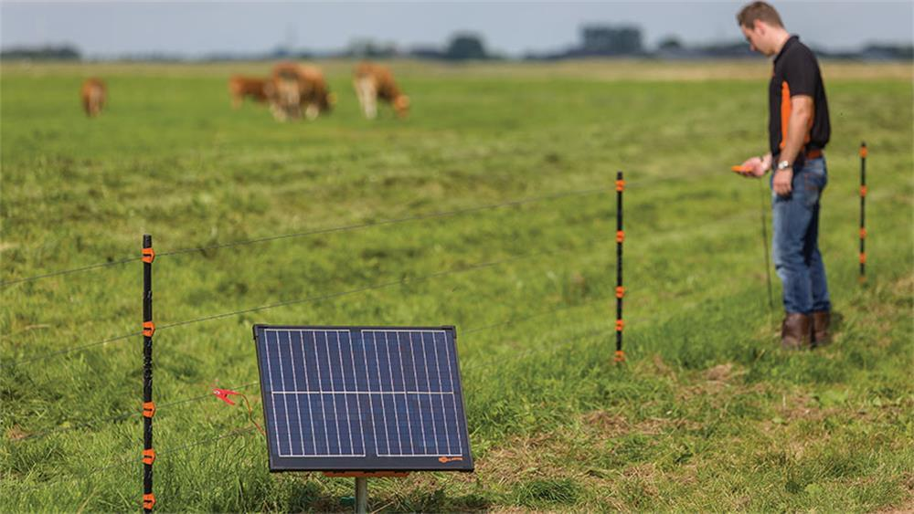 the maintenance for the electric fences