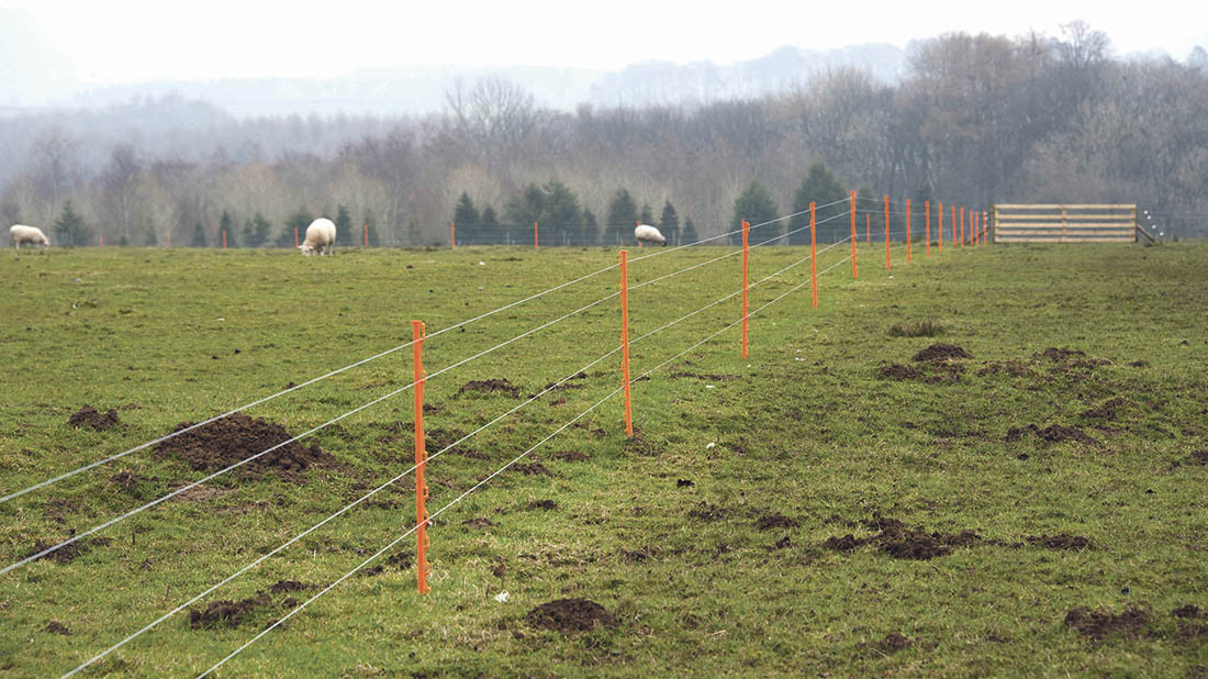 a complete guide for choosing the right electric fence supplies