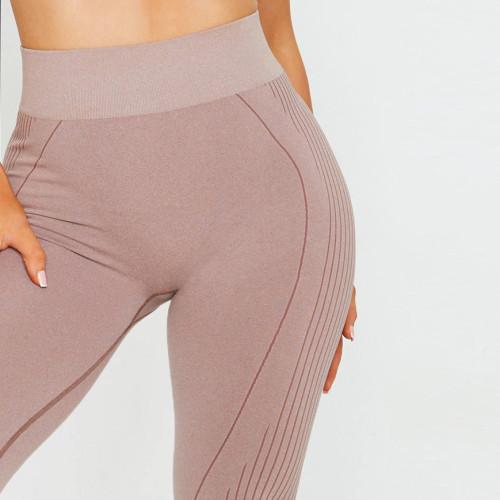Custom Seamless Gym Leggings Womens High Waisted Seamless Tights Wholesale-Aktik