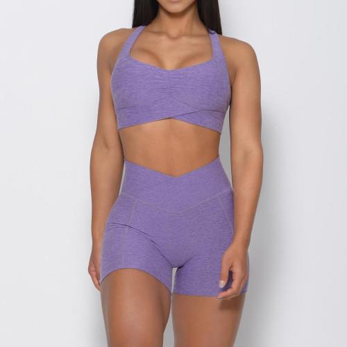 Wholesale Fitness Clothing Custom Sports Bra and Yoga Wear Shorts Set-Aktik