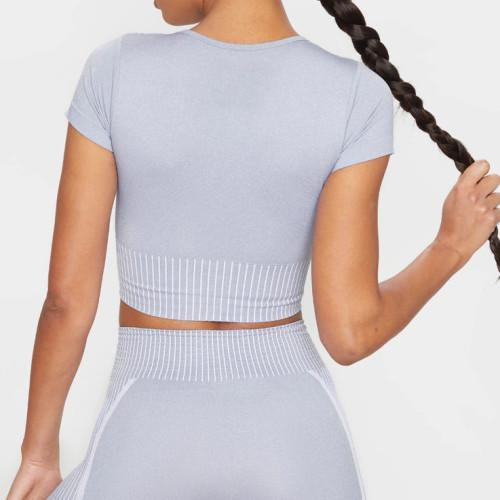 Custom Crop Seamless Gym Top Short Sleeve Seamless Workout Top for Women-Aktik