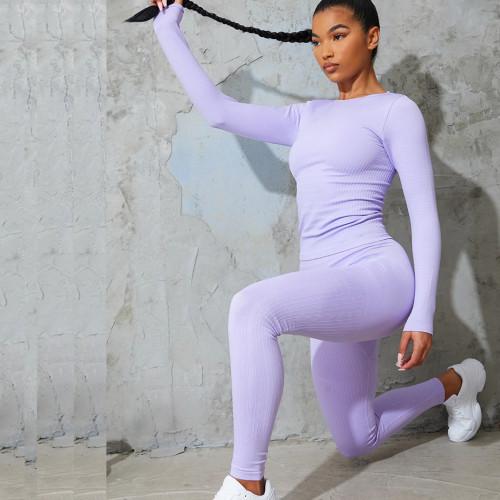 Custom Dri Fit Workout Top Long Sleeve Seamless Shirt Women's Top Seamless-Aktik