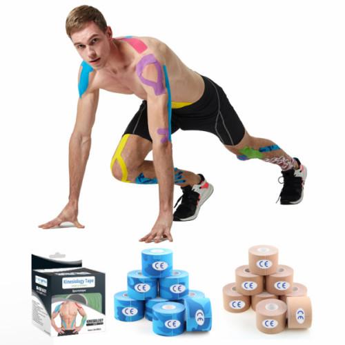 الجملة الشريط الرياضي علم الحركة للركبة والكتف